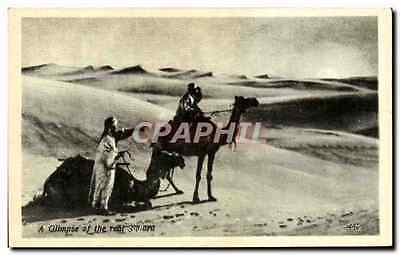 CPA A Gllmpse Of The Real Sahara Chameau Egypte