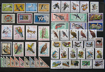 HUNGARY, POLAND, BULGARIA Bird Stamps. 3 Large Scans. Used