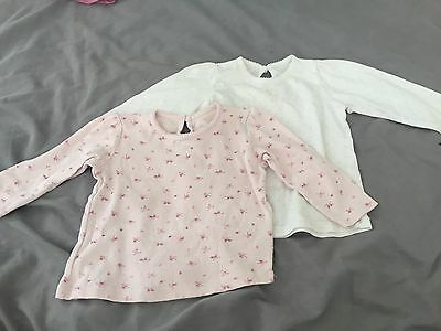 Baby Girls 2 Pack Long Sleeved Tops 9-12 Months