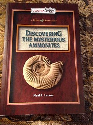 Discovering The Mysterious Ammonites
