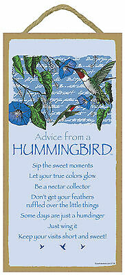 Advice from a Hummingbird Inspirational Wood Nature Bird Sign Plaque Made in USA