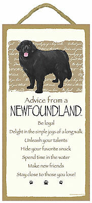 Advice from a Newfoundland Inspirational Wood Puppy Dog Sign Plaque Made in USA