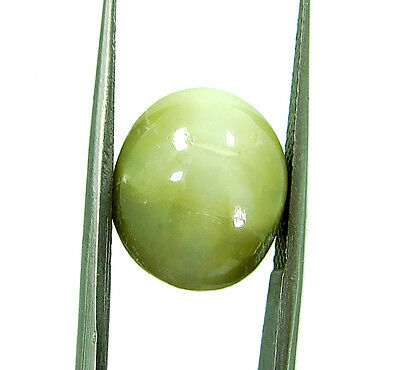 8.45 Ct Natural Cats Eye Loose Gemstone Cabochon Untreated Stone - 294