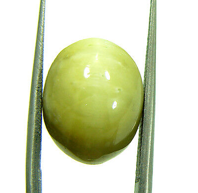 6.25 Ct Natural Cats Eye Loose Gemstone Cabochon Untreated Stone - 309