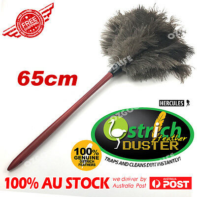 Wood stained handle soft floss ostrich feather duster Anti-static 65cm