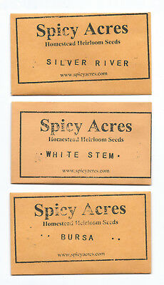 Spicy Acres 3 VARIETY PIPE BLEND #2 600+ Tobacco Seeds FAST ship EASY grow