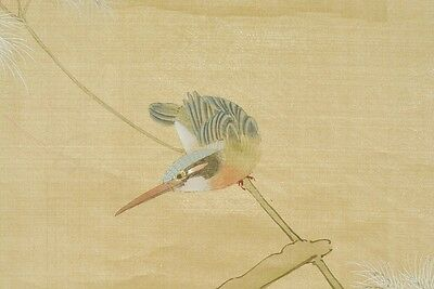 "Hanging Scroll 71"" Chinese Painting Kingfisher Asian China Art Antique Bird b399"