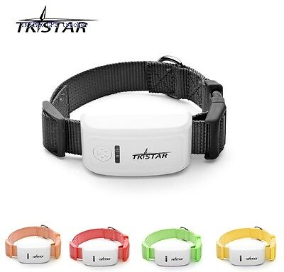 Mini Pet GPS Tracker TKSTAR tk909 For Dog Cat Cow,Realtime App Web online No box