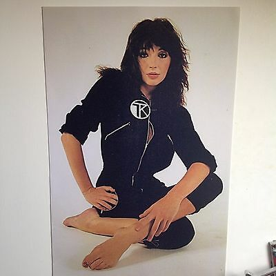 "Kate Bush Poster 24"" x 16"", 1982, beautiful picture from Dreaming era"