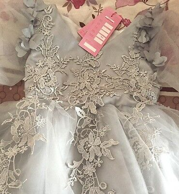 Girls Tutu Party Dress Birthday Lace Tulle Flower Girl lace appliques (size 5)
