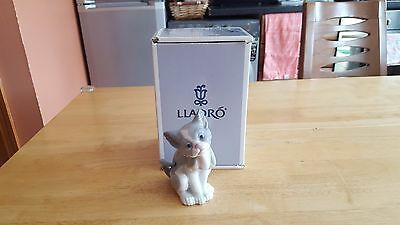 Beautiful LLADRO GATITO EXPECTANTE ( Feed Me ) Cat Figure. Mint in Box.