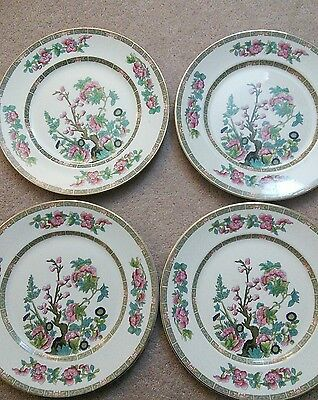 Maddock indian tree, 4 dinner plates