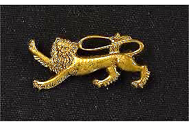 lions pin badge 2001
