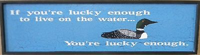 If you're lucky enough-hand painted Loon