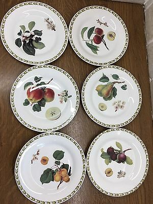 6 x Queens China Royal Horticultural Hookers Fruit/Salad/Desert/Side Plate 16cm