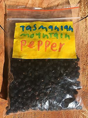 Tasmanian Mountain Pepper - 20gms for $7.00