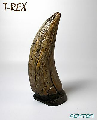 Imitation Dinosaur Fossil T-rex Tooth Solid Cast Stage Props & Reproductions
