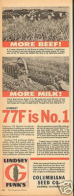 1966 Print Ad of Funk's G Hybrid Lindsey 77F Sorghum Sudangrass Columbiana Seed