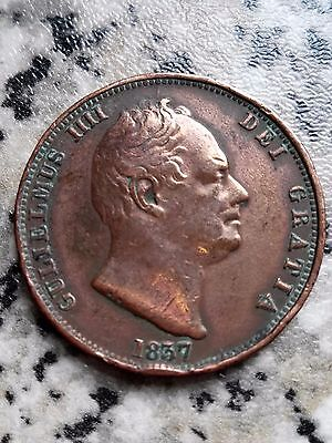 RARE 1837 ND - Small Date Over Large - William IV Bare Head Halfpenny