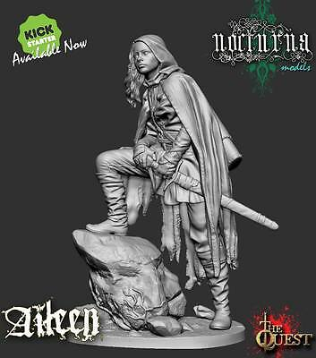 Nocturna Models The Quest Aileen 35mm resin unpainted kit
