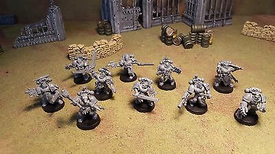 Warhammer 40k Space Wolves Space Marines Blood Claws / Grey Hunters X10, unpaint