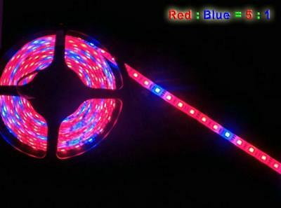 Full Spectrum Red Blue LED Grow Light strip Lamp Hydroponic Greenhouse Plant 12V