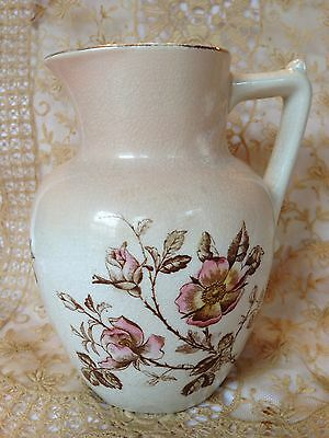c 1800's Antique Victorian Porcelain Water Pitcher WILD ROSES Peach Transferware
