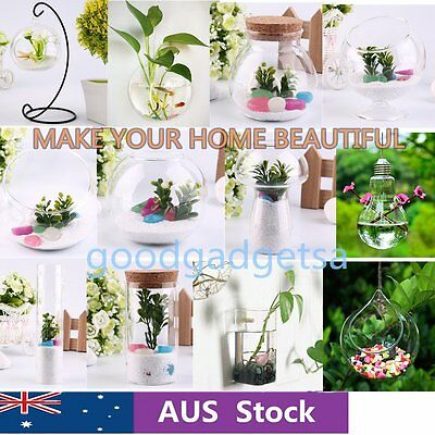 Hydroponic Plant Flower Hanging Glass Vase Container 31 Kinds Home Decaration GT