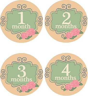 Personalised Monthly Baby Stickers, Milestone Stickers, Baby Shower Gift_G021