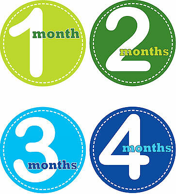 Personalised Monthly Baby Stickers, Milestone Stickers, Baby Shower Gift_B005