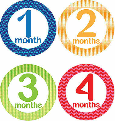 Personalised Monthly Baby Stickers, Milestone Stickers, Baby Shower Gift_B003