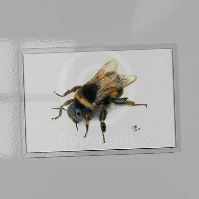 Bee magnet 9.5cm x 6.5cm, print of watercolour pencil drawing, bumble, busy