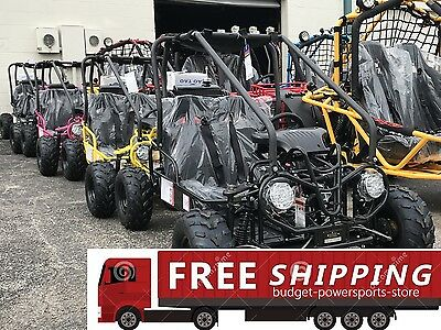 NEW Youth Go Kart 110cc Mini Kid Buggy AUTO w/ Reverse FREE SHIPPING SALE Buggy