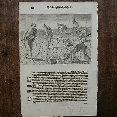 de Bry Theodore Florida, Two prints on one page