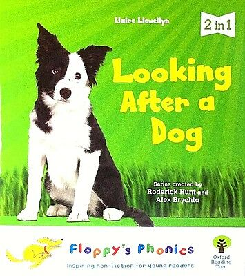 Looking After a Dog Floppy's Phonics Level 4 children's book new