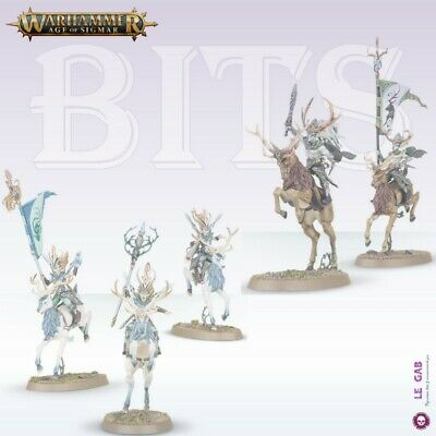 Bits Wanderers Sisters Of The Thorn Wild Riders Wood Elves Warhammer Battle Aos