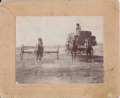 African American Sharecropper Photo Photograph Slavery Slave