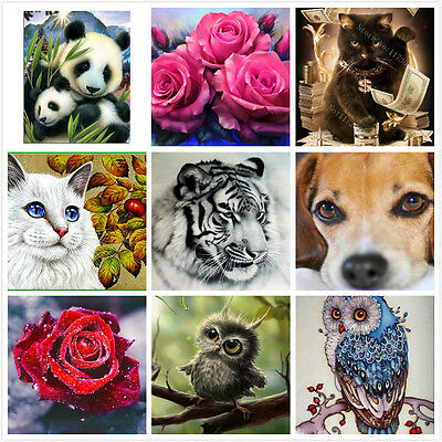 5D DIY Diamond Painting By Number Kits Cross Stitch S5 AU STOCK Home Decor