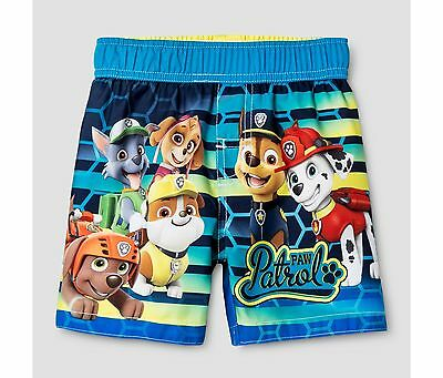 Toddler Boys Paw Patrol Swim Trunk Turquoise Size 5