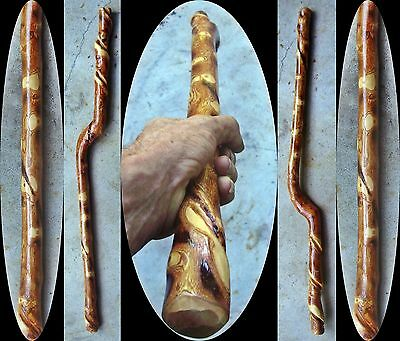 "35"" Black Plum Wood Ceremonial Max Mace Wood Mage Post Apocalyptic Tribal Club"
