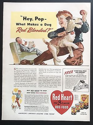 1941 Vintage Print Ad RED HEART Dog Puppy Illustration Color Little Boy Playing