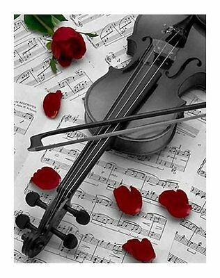 BW5 - Printed Fabric Cushion Insert Panel Patchwork Art - Violin & Roses