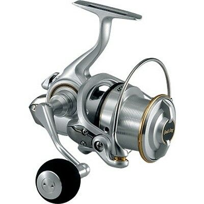 Spinning Reel DAIWA 14 Surf Basia 25 25QD EMS from Japan + Tracking number