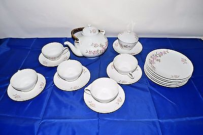 "Rare Exquisite 19pc MITTERTEICH Bavaria Germany Pink Floral China "" Springtime"""