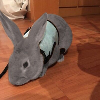 USeful Soft Harness With Stretchy Elastic Leash For Rabbit Bunny Pet Supply UK