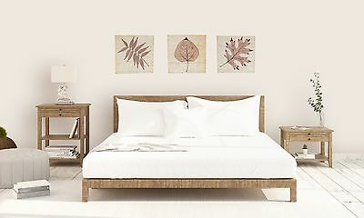 Leaf Timber Display Wall Art Picture Hanging Cream Brown Home Decor