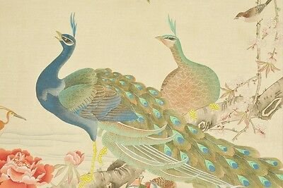 """Hanging Scroll 73"""" Chinese Painting peacock Bird Picture Picture Art China b568"""