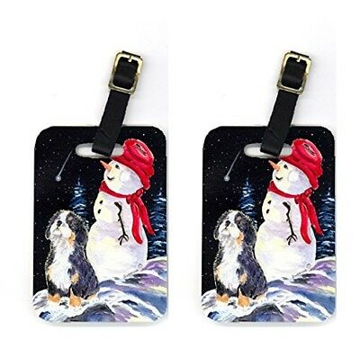 Carolines Treasures SS8575BT Bernese Mountain Dog Luggage Tag - Pair 2 10cm x