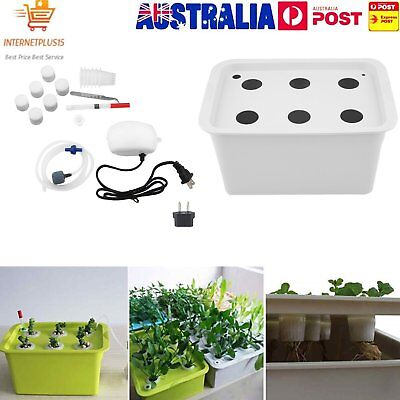 6 Holes Plant Site Hydroponic System Grow Kit Bubble Indoor Cabinet Box Garden P