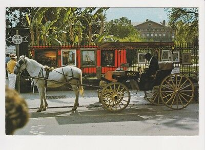 French Quarter sightseeing carriage Vieux Carre via horse & buggy New Orleans LA